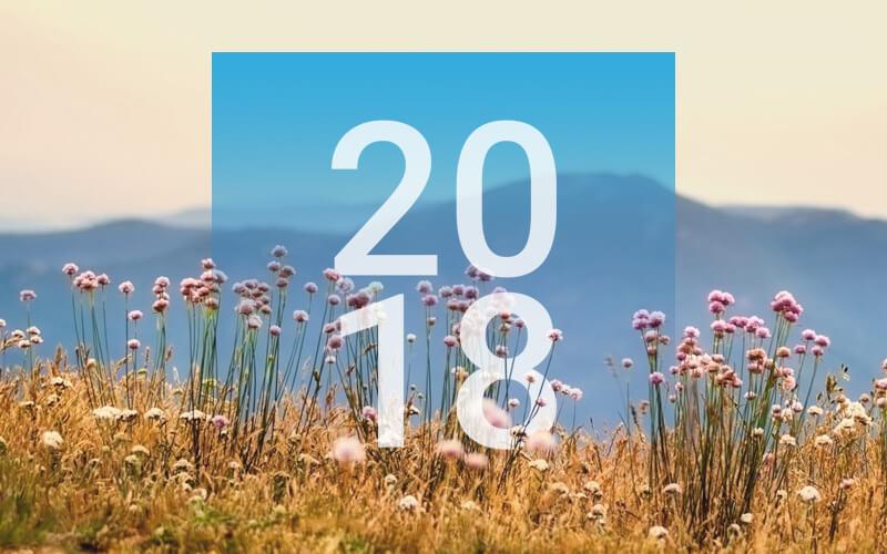 2018 Calendar Design