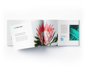 A mockup of a printed booklet